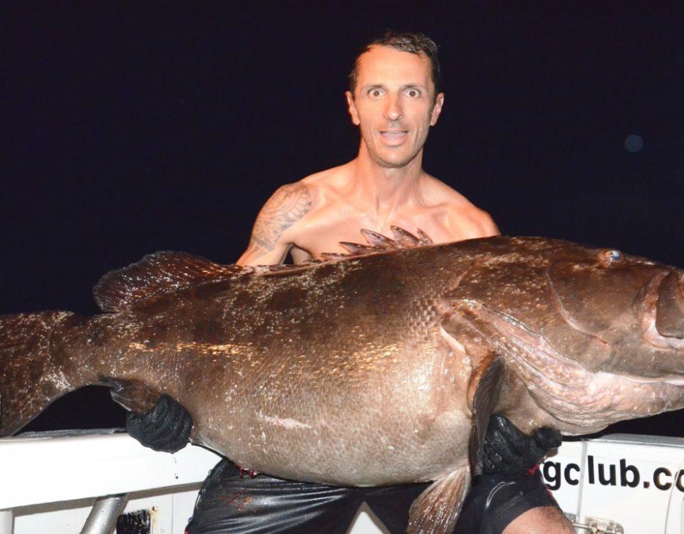 Dusky grouper or Epinephelus Marginatus - Rod Fishing Club - Rodrigues Island - Mauritius - Indian Ocean