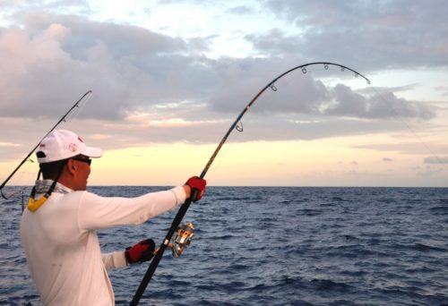 Fighting a wahoo with a popper - Rod Fishing Club - Rodrigues Island - Mauritius - Indian Ocean