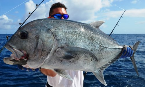 Giant Trevally (GT) released - Rod Fishing Club - Rodrigues Island - Mauritius - Indian Ocean