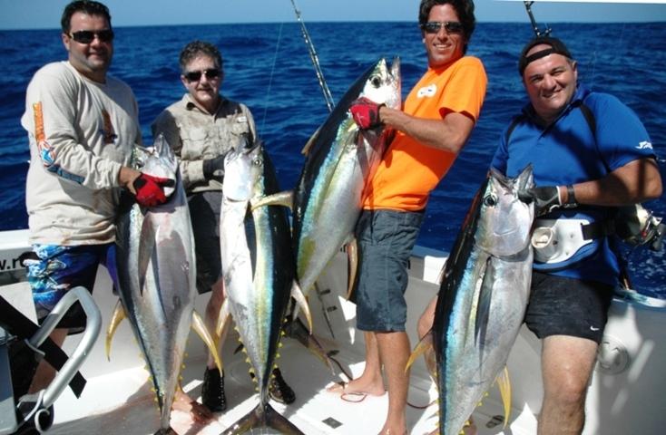 Good yellowfin tunas on trolling - Rod Fishing Club - Rodrigues Island - Mauritius - Indian Ocean