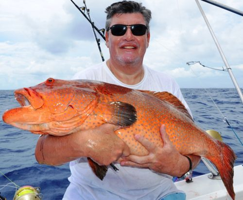 Grouper by Axel - Rod Fishing Club - Ile Rodrigues - Maurice - Océan Indien