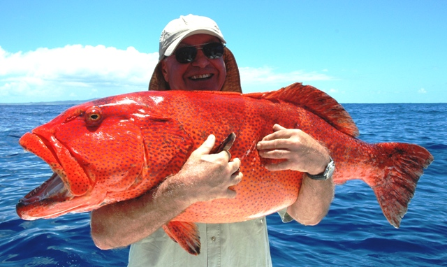 Grouper caught on jigging - Rod Fishing Club - Rodrigues Island - Mauritius - Indian Ocean
