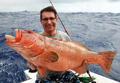 Grouper on jigging by Frans - Rod Fishing Club - Rodrigues Island - Mauritius - Indian Ocean