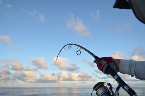 Jigging action - Rod Fishing Club - Rodrigues Island - Mauritius - Indian Ocean