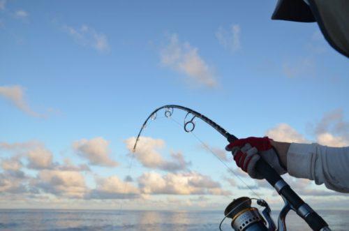 Jigging action - Rod Fishing Club - Rodrigues Island - Mauritius - Indian Ocean