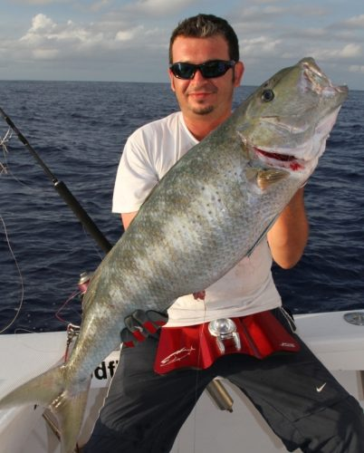 Jobfish on jigging - Rod Fishing Club - Rodrigues Island - Mauritius - Indian Ocean