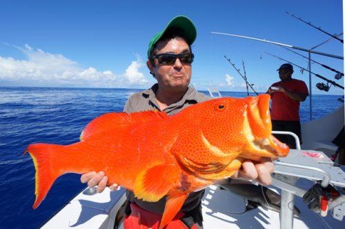 Moontail sea bass on jigging - Rod Fishing Club - Rodrigues Island - Mauritius - Indian Ocean