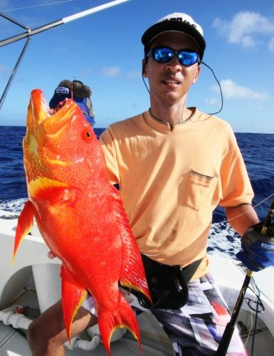 Moontail sea bass on jigging - Rod Fishing Club - Rodrigues Island - Mauritius - Indian Ocean