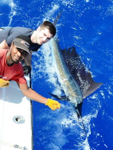 Nice 70lbs Sailfish released for Kevin - Rod Fishing Club - Rodrigues Island - Mauritius - Indian Ocean