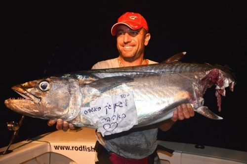 Nice doggy cut by shark at night - Rod Fishing Club - Rodrigues Island - Mauritius - Indian Ocean