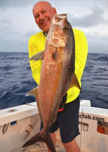 Seriola on jigging by Serguey - Rod Fishing Club - Rodrigues Island - Mauritius - Indian Ocean