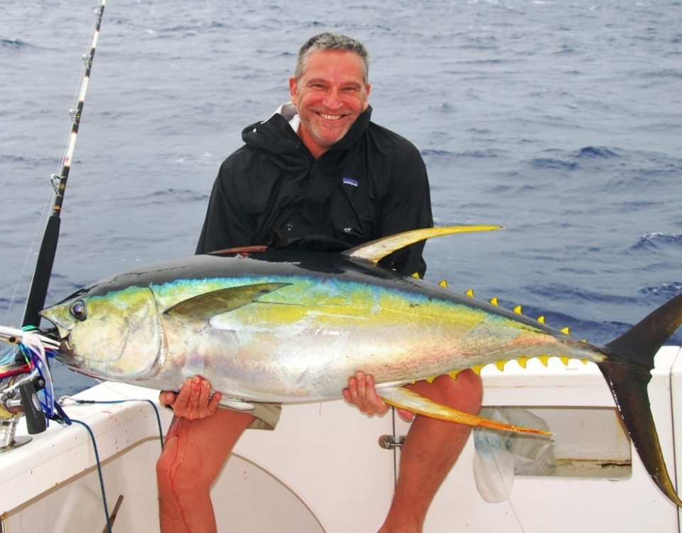 Thon jaune ou Thunnus albacares - Rod Fishing Club - Ile Rodrigues - Maurice - Océan Indien