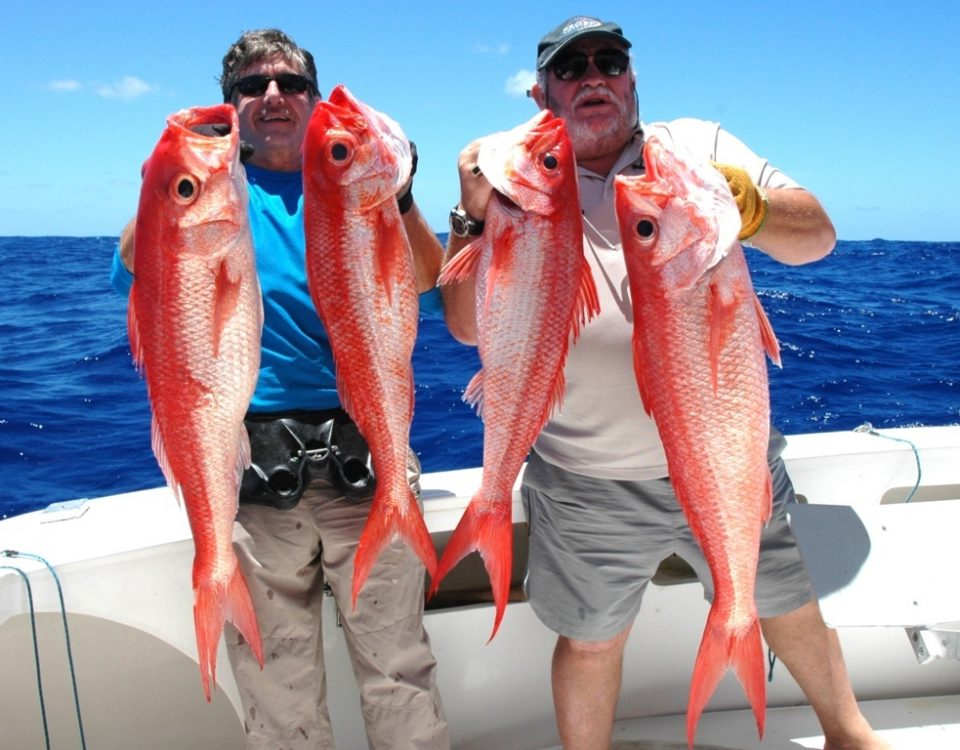 Vivaneau la flamme ou Etelis coruscans - Rod Fishing Club - Ile Rodrigues - Maurice - Océan Indien