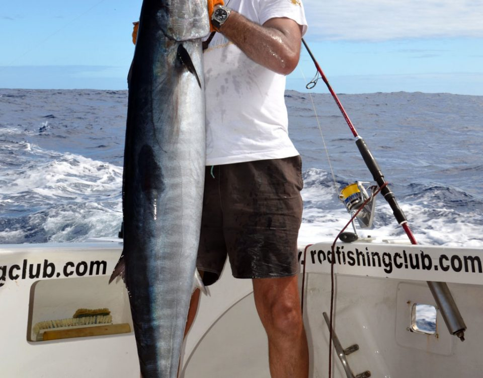 Wahoo ou Acanthocybium solandri - Rod Fishing Club - Ile Rodrigues - Maurice - Océan Indien