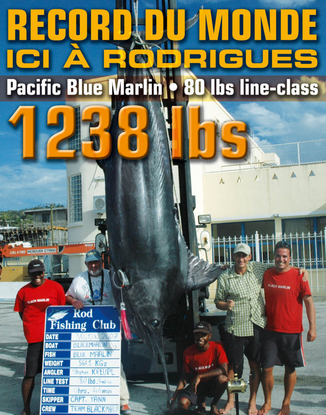 World record of pacific blue marlin on 80lbs of 561.5kg - Rod Fishing Club - Rodrigues Island - Mauritius - Indian Ocean