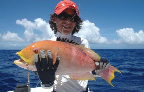 Yellow head wrasse on jigging - Rod Fishing Club - Rodrigues Island - Mauritius - Indian Ocean
