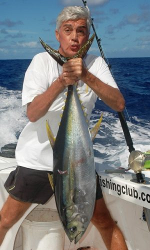 Yellowfin tuna on trolling - Rod Fishing Club - Rodrigues Island - Mauritius - Indian Ocean