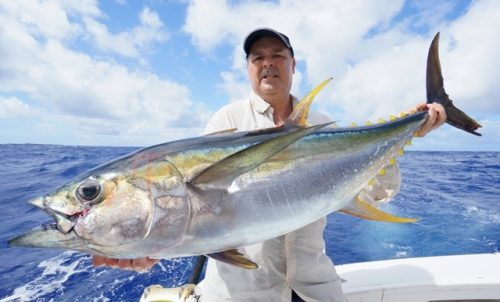Yellowfin tuna on trolling for Alberto - Rod Fishing Club - Rodrigues Island - Mauritius - Indian Ocean