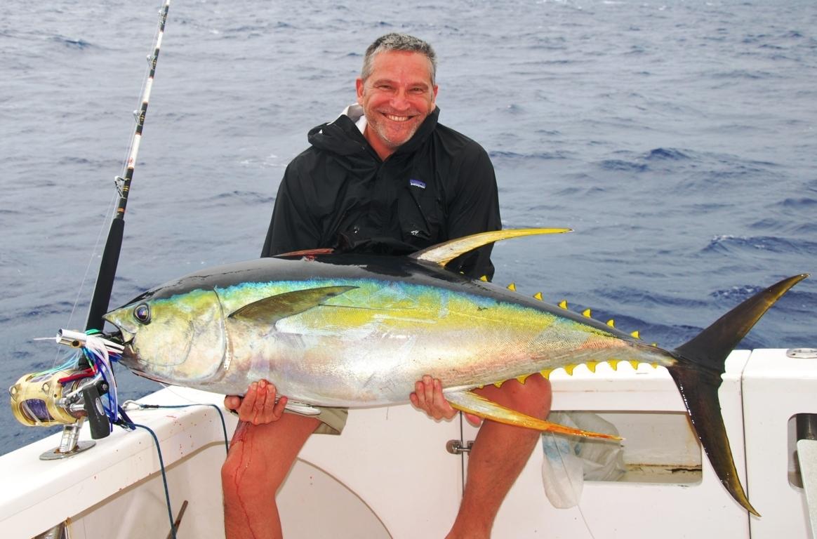 Yellowfin tuna or thunnus albacares rod fishing club for Tuna fishing pole