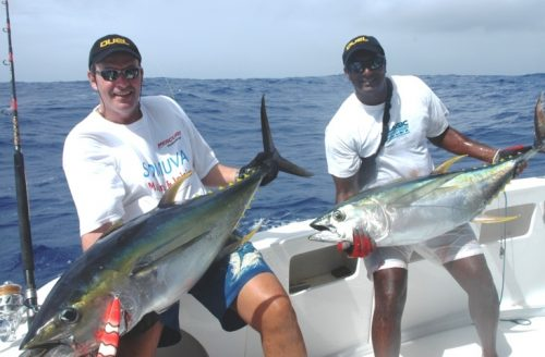Yellowfin tunas around 30kg on Heavy Spinning - Rod Fishing Club - Rodrigues Island - Mauritius - Indian Ocean