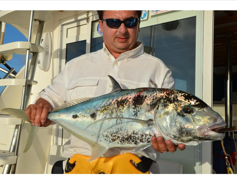 Yellowspotted trevally - Rod Fishing Club - Rodrigues Island - Mauritius - Indian Ocean