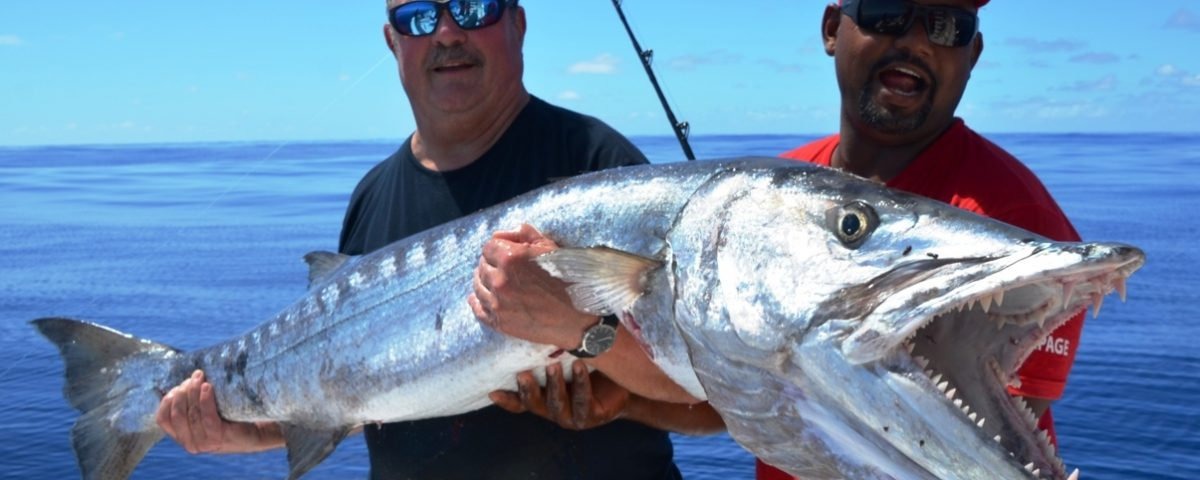 barracuda - Rod Fishing Club - Rodrigues Island - Mauritius - Indian Ocean