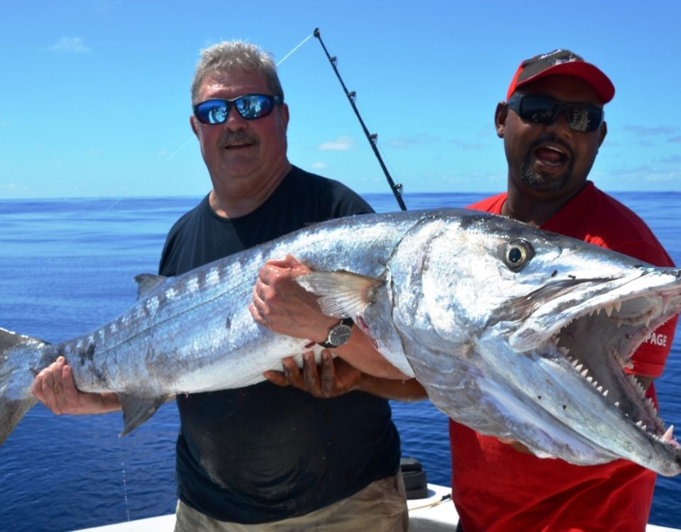 barracuda - Rod Fishing Club - Rodrigues Island - Mauritius - Indian Ocean