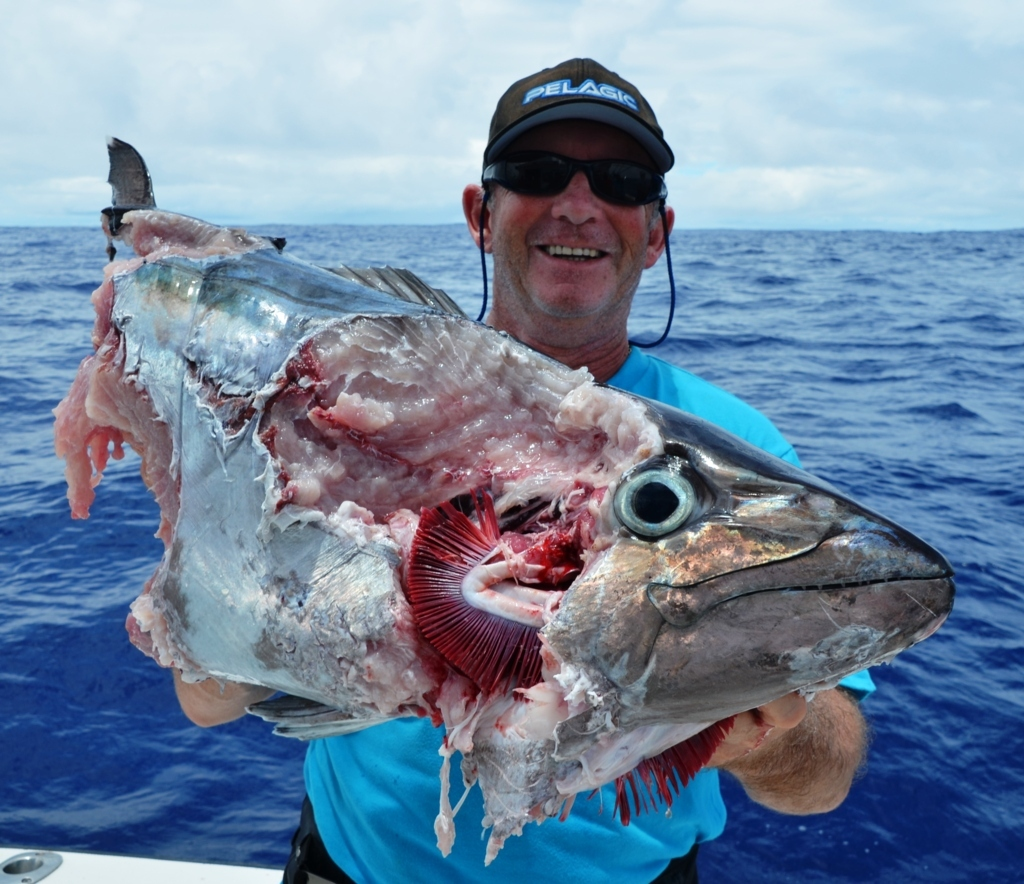 King fish team rodrigues island mauritius 02 to 07 for Big blue fish