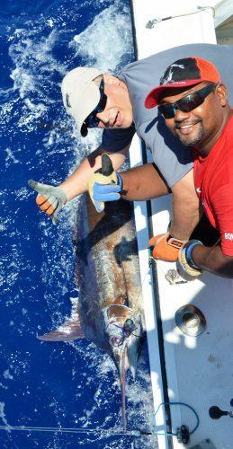 blue marlin released - Rod Fishing Club - Rodrigues Island - Mauritius - Indian Ocean