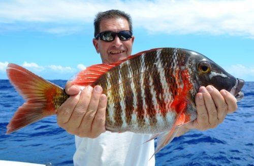 bottomfish - Rod Fishing Club - Rodrigues Island - Mauritius - Indian Ocean