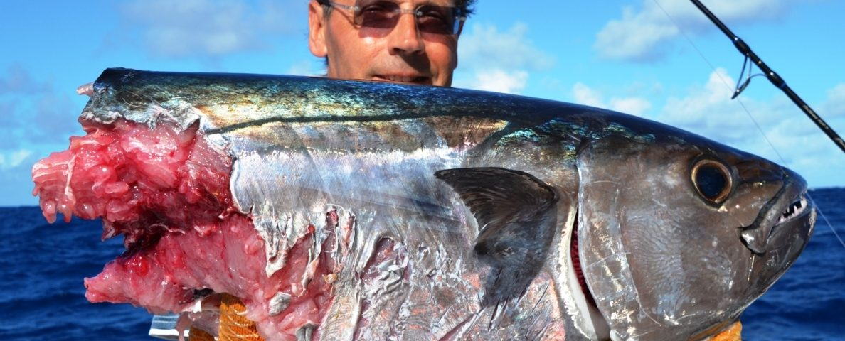 cutting doggy - Rod Fishing Club - Rodrigues Island - Mauritius - Indian Ocean
