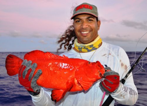 golden hind - Rod Fishing Club - Rodrigues Island - Mauritius - Indian Ocean