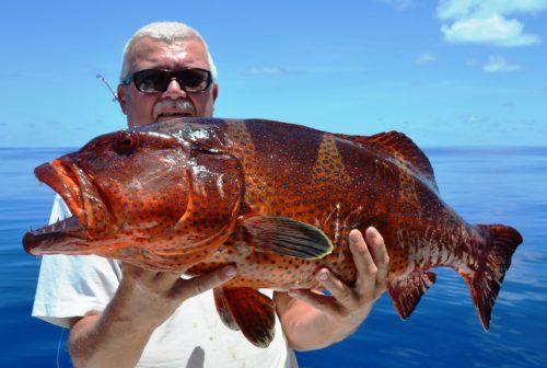 grouper - Rod Fishing Club - Rodrigues Island - Mauritius - Indian Ocean