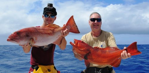 grouper coral trout - Rod Fishing Club - Rodrigues Island - Mauritius - Indian Ocean