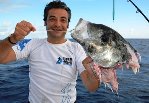 head of trevally after shark - Rod Fishing Club - Rodrigues Island - Mauritius - Indian Ocean