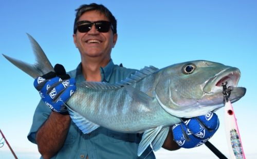 jobfish - Rod Fishing Club - Rodrigues Island - Mauritius - Indian Ocean