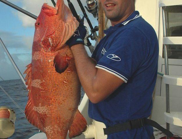 mérou babone - Rod Fishing Club - Ile Rodrigues - Maurice - Océan Indien