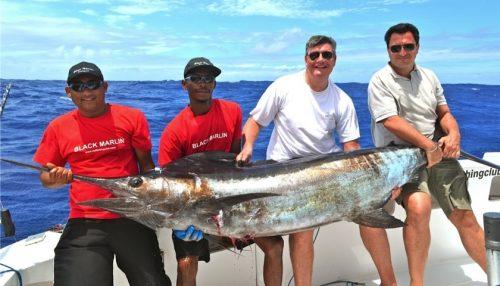 marlin bleu - Rod Fishing Club - Ile Rodrigues - Maurice - Océan Indien