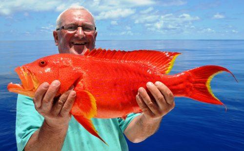 moontail sea bass - Rod Fishing Club - Rodrigues Island - Mauritius - Indian Ocean
