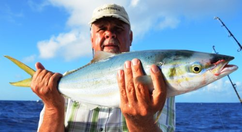 rainbow runner - Rod Fishing Club - Rodrigues Island - Mauritius - Indian Ocean