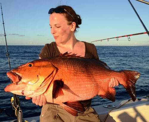 red snapper - Rod Fishing Club - Rodrigues Island - Mauritius - Indian Ocean