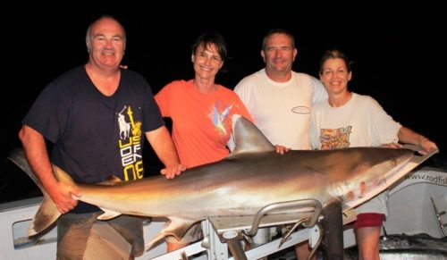 requin pointe blanche - Rod Fishing Club - Ile Rodrigues - Maurice - Océan Indien