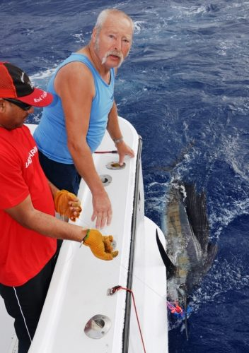 sailfish released by Dré - Rod Fishing Club - Rodrigues Island - Mauritius - Indian Ocean