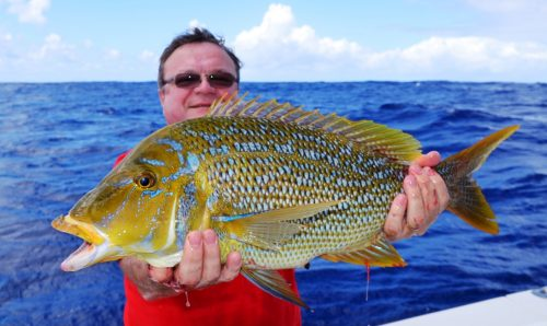 spangled emperor - Rod Fishing Club - Ile Rodrigues - Maurice - Océan Indien
