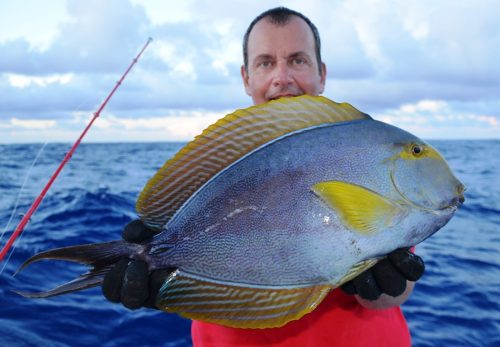 surgeon fish on baiting - Rod Fishing Club - Rodrigues Island - Mauritius - Indian Ocean