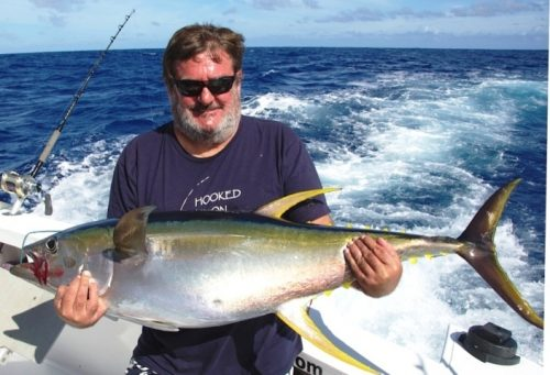 thon jaune - Rod Fishing Club - Ile Rodrigues - Maurice - Océan Indien