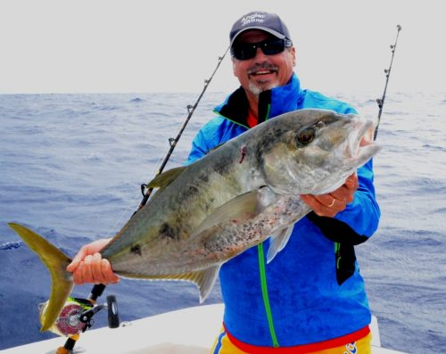 yellowspotted trevally on jigging - Rod Fishing Club - Rodrigues Island - Mauritius - Indian Ocean