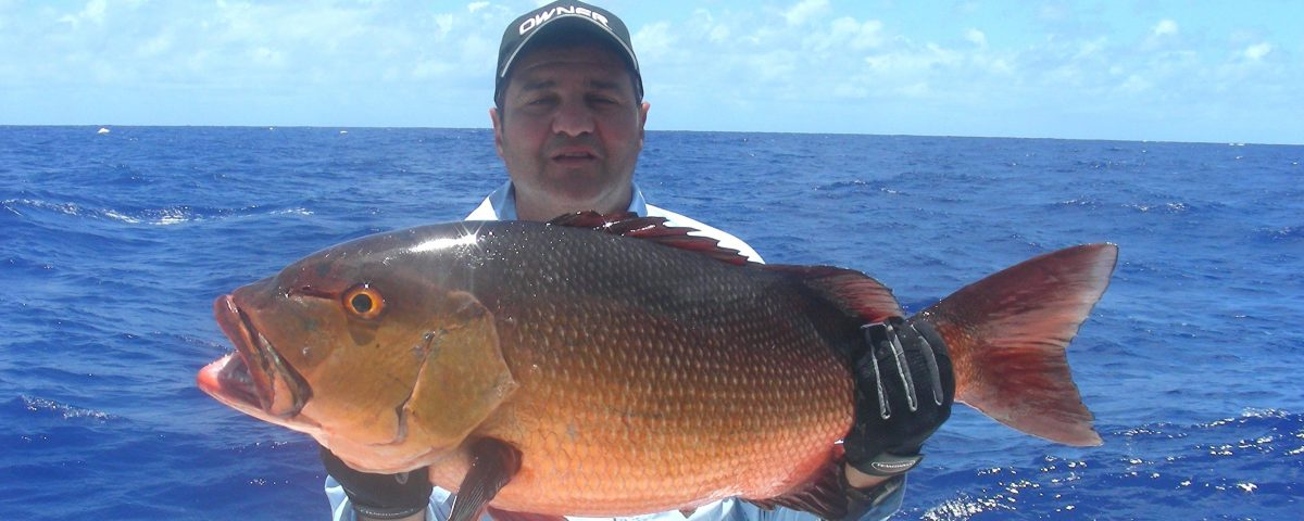 13.5kg two spot red snapper world record all tackle on baiting - 24 12 2007