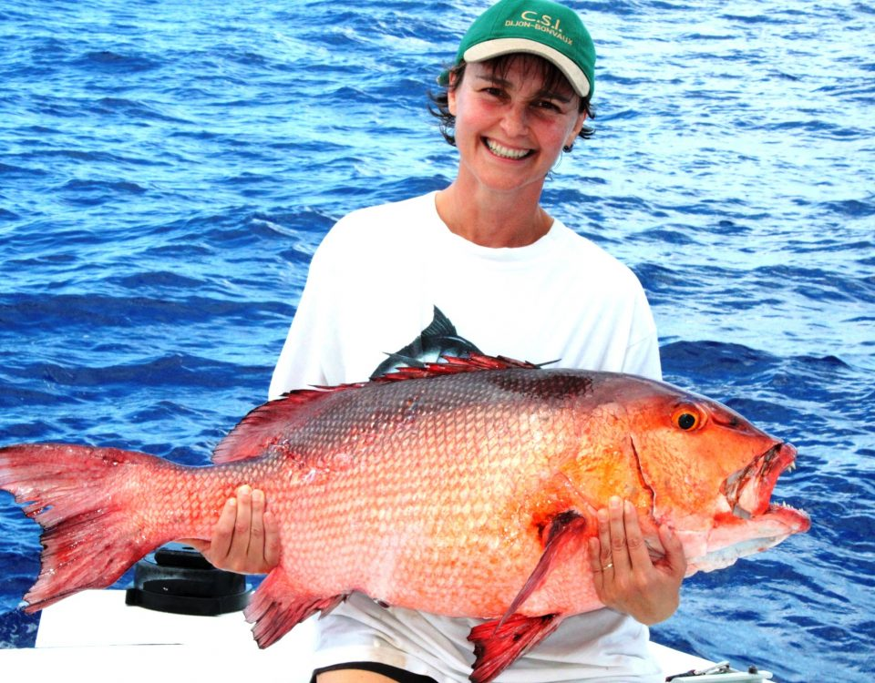 14.5kg two spot red snapper world record all tackle on baiting - 25 11 2012