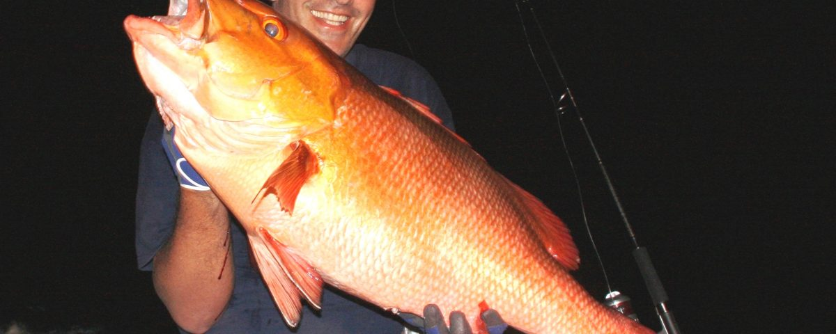 14kg two spot red snapper world record all tackle on baiting - 12 11 2009